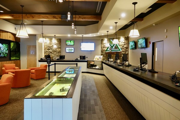 cannabis dispensary design
